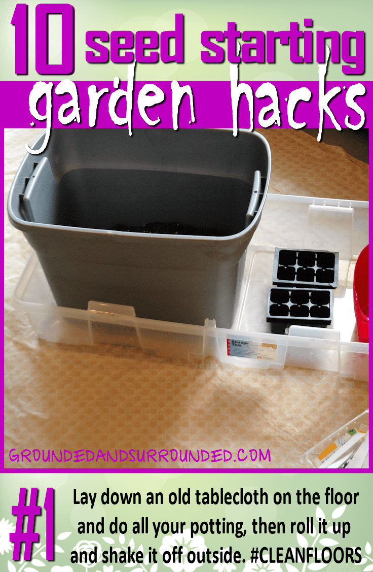 I am not a fan of dirt in my house. But when you are potting your seeds, dirt is sort of an important ingredient. I lay down an old tablecloth on the floor and do all my potting, then roll it up and shake it off outside. You won't want to miss the rest of our 10 Seed Starting Garden Hacks! These DIY tips and ideas will help you be the best gardener around!