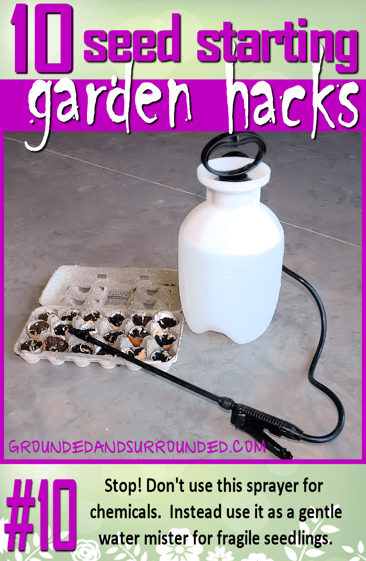 There is no better way to water your baby seedlings than with a sprayer (typically used to spray chemicals on your lawn/weeds ….something we DO NOT DO!). It is a gentle mister, and won't damage those fragile little cuties. You won't want to miss the rest of our 10 Seed Starting Garden Hacks! These DIY tips and ideas will help you be the best gardener around!