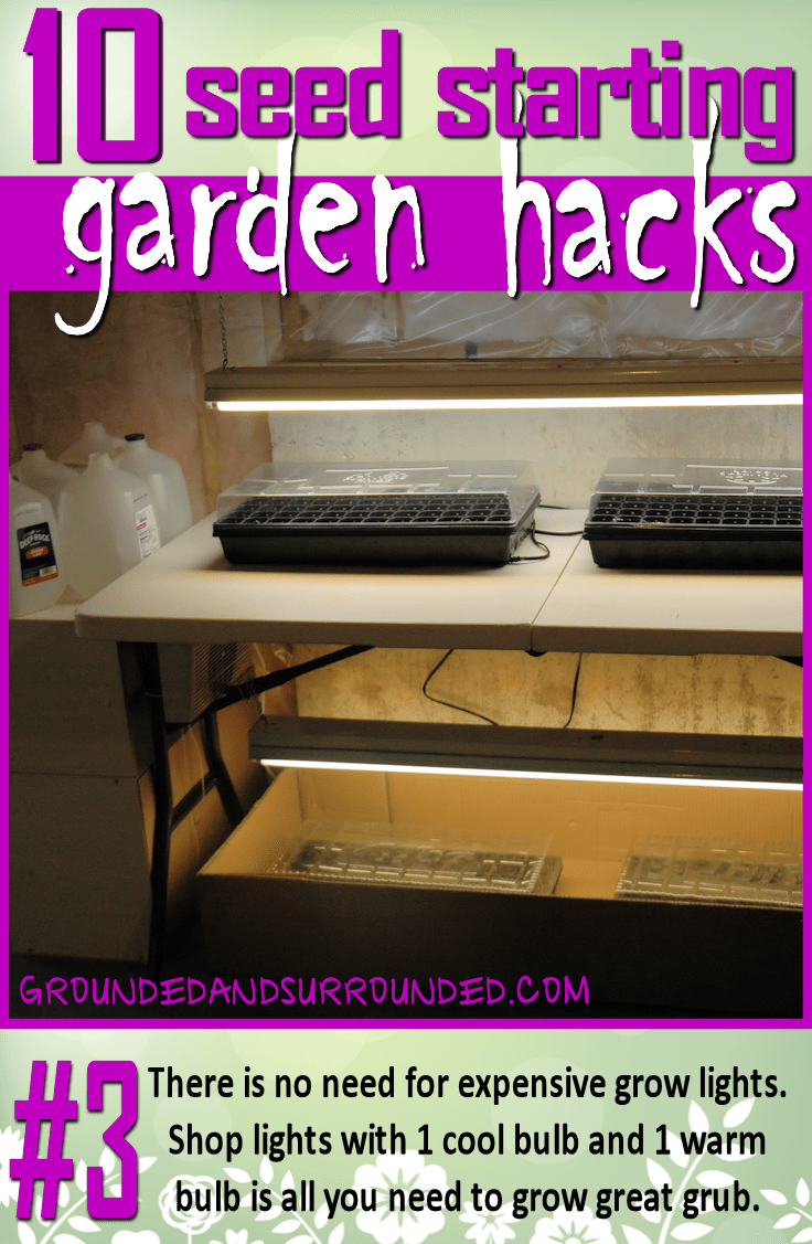 You do not need expensive grow lights. Just head to your hardware store and pick up some low cost shop lights. Buy one warm and one cool bulb to put in them so your plants are getting the full spectrum of light (they will reward you for this). You won't want to miss the rest of our 10 Seed Starting Garden Hacks! These DIY tips and ideas will help you be the best gardener around!