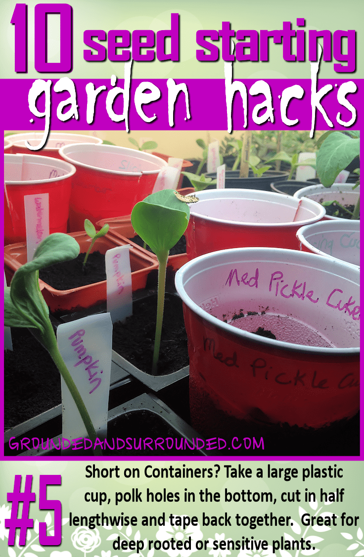 10 Seed Starting Garden Hacks Grounded Amp Surrounded