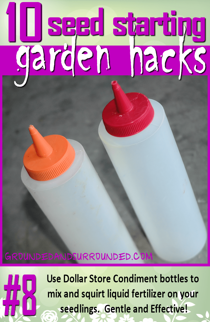 I love to use seaweed fertilizer on my seedlings. This stuff is stinky and needs to be mixed with water. The dollar store condiment bottles work perfectly! Cheap and effective. You won't want to miss the rest of our 10 Seed Starting Garden Hacks! These DIY tips and ideas will help you be the best gardener around!