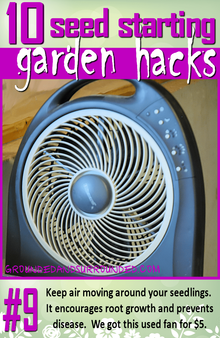 It is important to keep air moving around your seedlings. It also encourages them to build up their root system. I found a great fan on Craigslist for 5 dollars, best purchase ever! You won't want to miss the rest of our 10 Seed Starting Garden Hacks! These DIY tips and ideas will help you be the best gardener around!