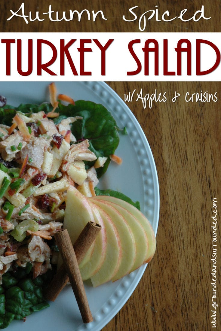 Autumn Spiced Turkey Salad If you have leftover turkey, this fall recipe is a must! This healthy and unique salad recipe combines all the flavors of fall. The apples and dried cranberries are sweet and tart, and the spices complement the flavor of the turkey. Find more recipes like this at https://happihomemade.com/recipe/autumn-spiced-turkey-salad/