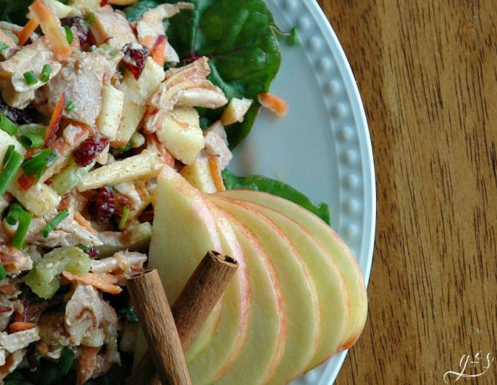 A plate of healthy and gluten free Autumn Spiced Turkey Salad from HappiHomemade.com.