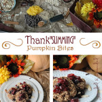Thankslimming Pumpkin Bites Don't you love the delicious flavor of fall without all the guilt?! These flavorful energy bites are healthy, gluten-free, and use whole food ingredients.Find more recipes like this at groundedandsurrounded.com