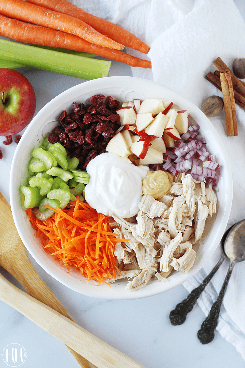 A birds eye view of all the ingredients for a fall turkey salad.