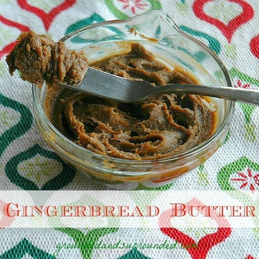 If Cookie Butter had a sweet, adorable, and jolly cousin, it would be none other than the tasty creation we call, Gingerbread Butter. This festive delicacy is my new addiction. This butter is wonderful on toast, crackers, as a dip for fruit or eaten by the spoonful right out of the jar. Be still my heart...this stuff is AMAZING! http://www.groundedandsurrounded.com/recipe/move-cookie-butter-gingerbread-butter/