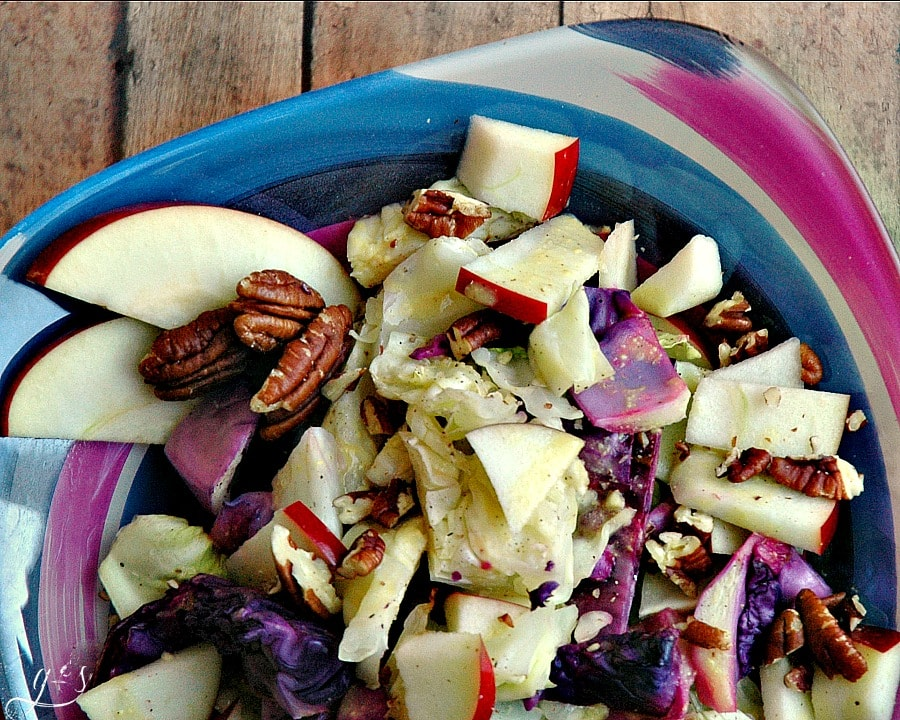 "This warm, healthy, and colorful salad is simple to make and full of flavor! It is low calorie and pairs perfectly with any protein and will turn everyone at the table into a cabbage lover! The apples and pecans are just the ""icing on the cake""! https://happihomemade.com/recipe/roasted-cabbage-apple-pecan-salad/"