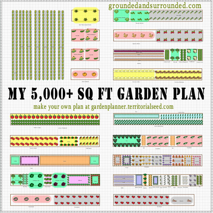 My 5 000 sq ft vegetable garden plan grounded surrounded for Planning my garden layout