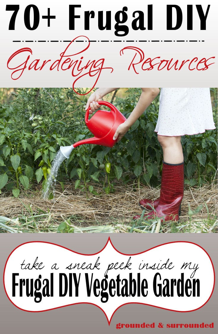 Are you interested in growing your own food, but struggle to find any extra room in your budget for gardening supplies? These Frugal DIY GARDEN tips will help you to grow your own food without breaking the bank on gardening supplies. Bring on the harvest!! There is nothing better than your own homegrown fresh produce! https://www.groundedandsurrounded.com/frugal-diy-garden-articles/