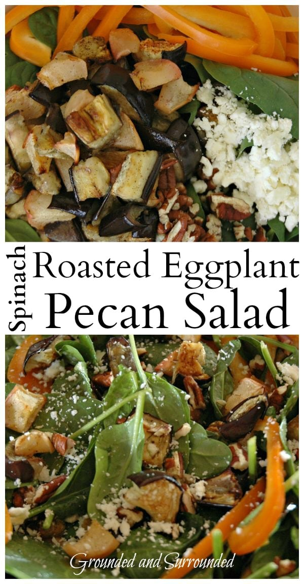 Looking for a unique, yet simple salad to prepare for your next meal or family get together? Well, you found it! Serve this healthy and whole food recipe warm or cold! Oh, the delicious flavors in this salad! You better print extra copies of this recipe because all your guests will be asking for it! https://happihomemade.com/recipe/spinach-roasted-eggplant-and-pecan-salad/