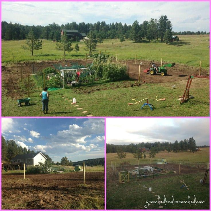 My 5 000 sq ft vegetable garden plan grounded surrounded for Large vegetable garden