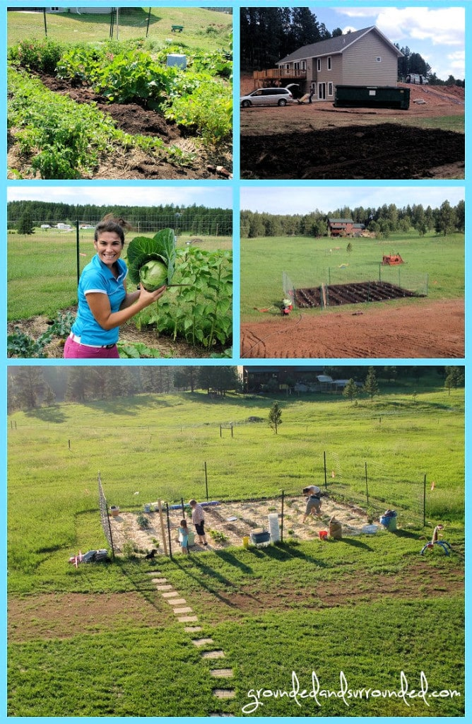 Five photos of Sarah Koontz's first vegetable garden.