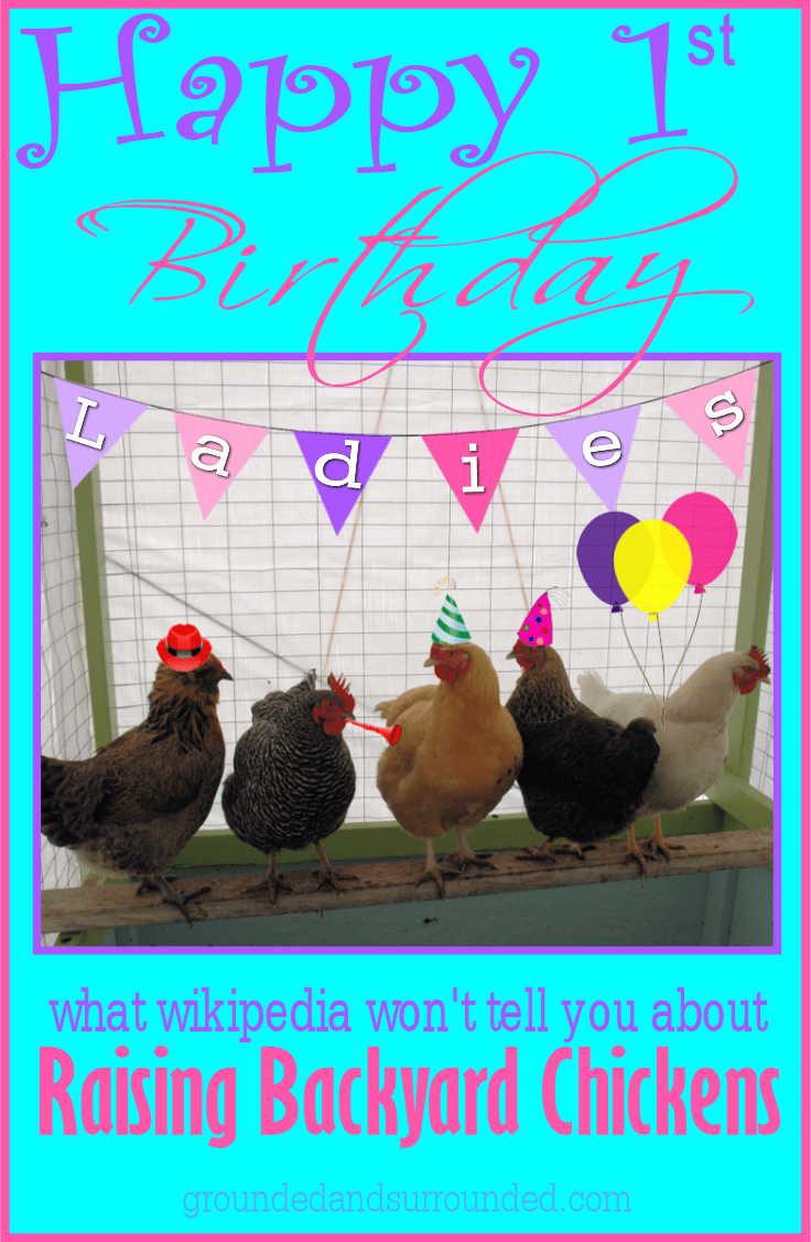 You will find the lessons, most being hilarious, we learned our first year raising backyard chickens. Considering chickens? I hope that this article will convince you to take the leap! https://happihomemade.com/year-1-raising-backyard-chickens/