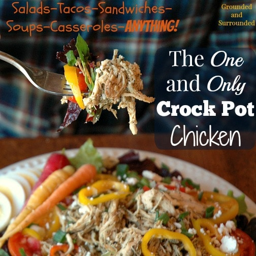 This healthy chicken is so versatile that I use it in everything from enchiladas and taco salads to chicken lasagna and Greek inspired salads. I love having this already cooked protein in my fridge during the week to top salads or use in tacos for a quick and easy meal. This recipe would be perfect to double and put half in the freezer! Plus, it's gluten-free! http://www.groundedandsurrounded.com/recipe/one-and-only-crock-pot-chicken/