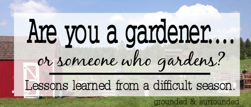 grow with garden featured image