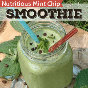 Nutritious-Mint-Chip-Smoothie sq
