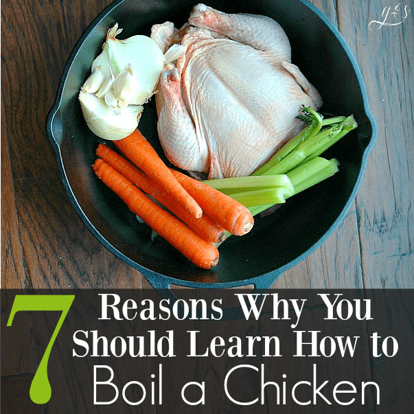 how to boil a chicken