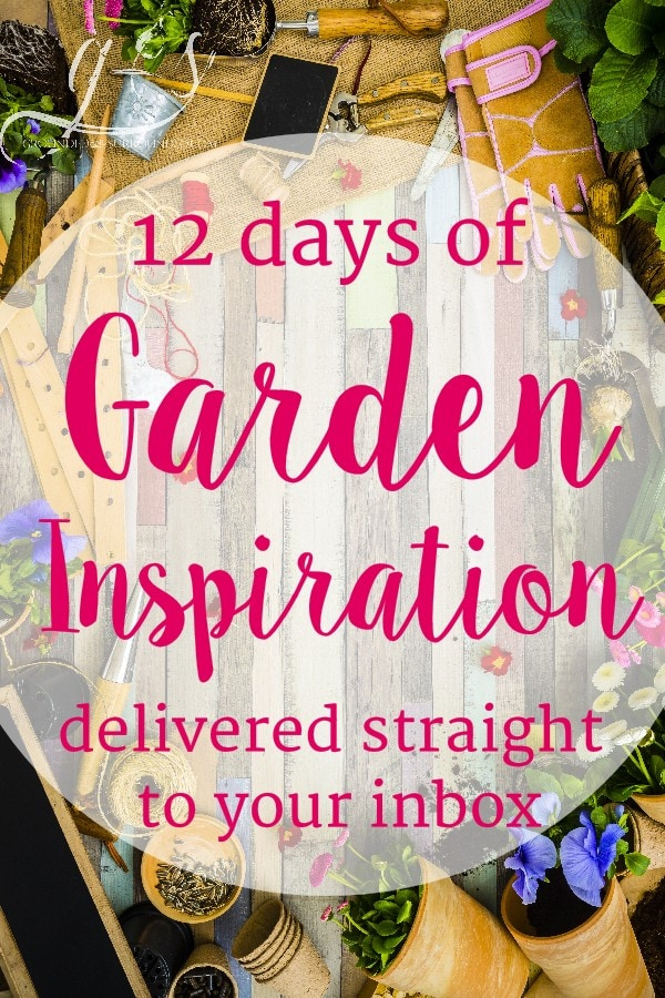 I am so excited to invite you to join me for this free e-mail series packed with inspiration and education for gardeners. Don't consider yourself to be a gardener yet? That's ok! Everyone has got to start somewhere, and I am inviting you to start here…with me. I believe that everyone can grow their own food, including you! If you have ever tried and failed, we are here to encourage you to TRY AGAIN!