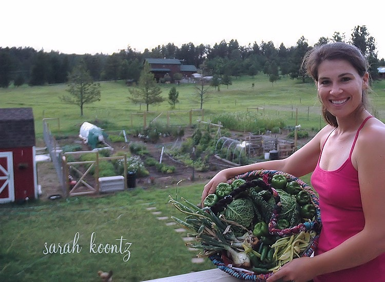I believe that everyone can grow their own food, even you! If you have ever tried and failed, I am here to encourage you to TRY AGAIN! We are here to help turn your gardening failures into success with our free 12-day gardening e-series for our friends who aspire to grow their own food, but don't know where to start.