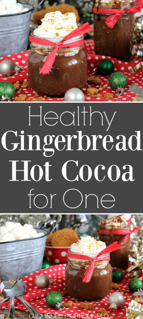 how to make hot chocolate with cocoa powder for one