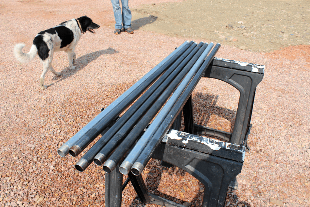 Steel pipes drying on saw horses.