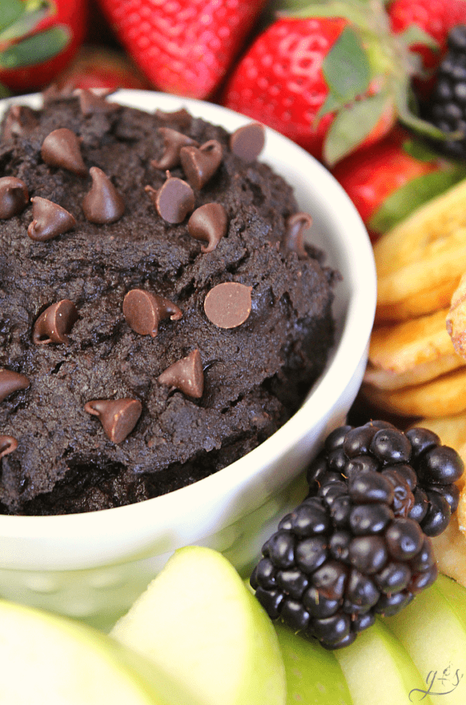 The BEST Brownie Batter Hummus | This clean eating homemade recipe makes the perfect snack or dessert. Healthy, gluten free, and chocolate- what more could you want?! It tastes like frosting or dark chocolate cookie dough! Chickpeas (garbanzo beans), honey, peanut butter (nut butter), and cocoa powder make the most indulgent and easy fruit dip EVER. Dippers to use: berries, apples, Nilla wafers, pretzels, dried banana chips! #recipes #snacks #sweets