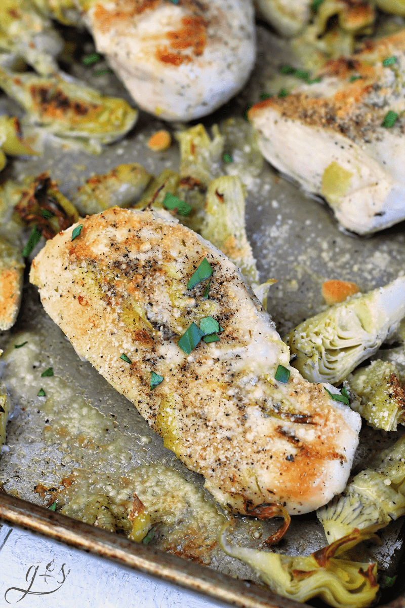 Chicken breasts and artichoke hearts on a sheet pan sprinkled with Parmesan cheese and broiled to a golden perfection.